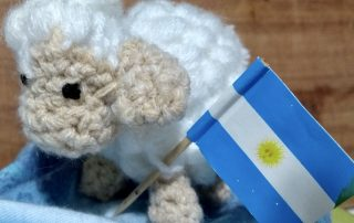 Bandera Argentina Reto Hilandia