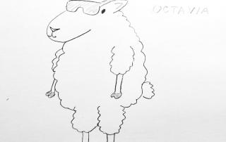 Octavia Reto Hilandia
