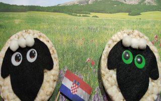 2 ovejas de arroz Reto Hilandia